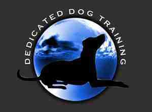 Dedicated Dog Training logo